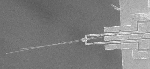 Microgripper holding silicon nanowires. (Opensource Handbook of Nanoscience and Nanotechnology)