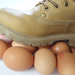 Turning waste egg shells into building material