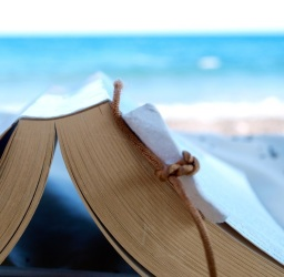 A summer reading list for blerds